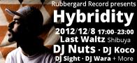 Rubbbergard Record presents Hybridity